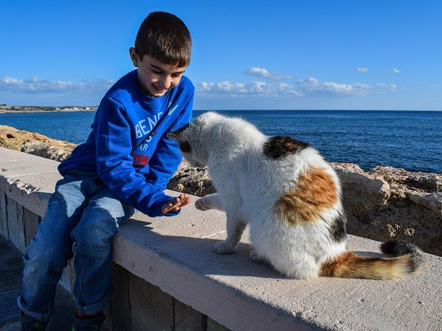 chlapec s kočkou